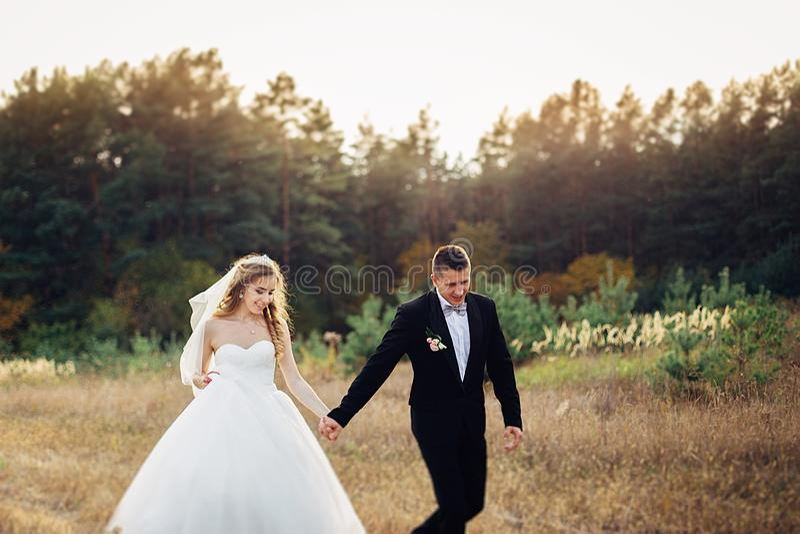 Gran retrato de un par que se casa, que está caminando en el campo fotografía de archivo libre de regalías