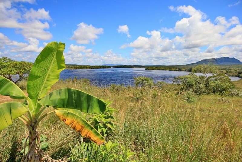 Gran Sabana over Carrao Rivier, Venezuela stock afbeelding
