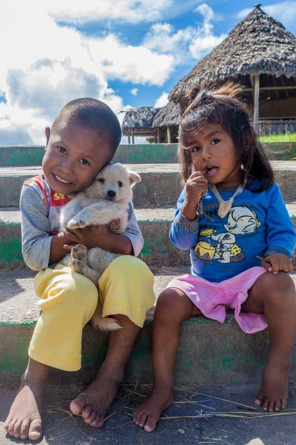 GRAN SABANA, VENEZUELA - AUGUSTUS 13, 2015: Inheemse kinderen in het gebied van Gran Sabana van Venezue royalty-vrije stock foto's