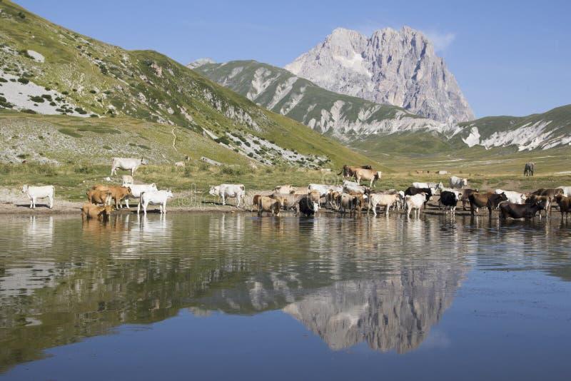 Gran Sasso, Abruzzo - Italië royalty-vrije stock afbeeldingen