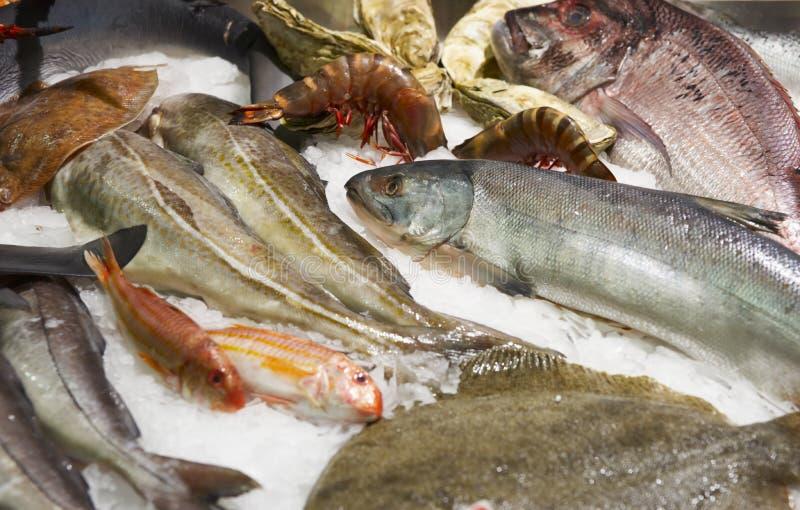 Gran variedad de pescados y de mariscos fotografía de archivo libre de regalías