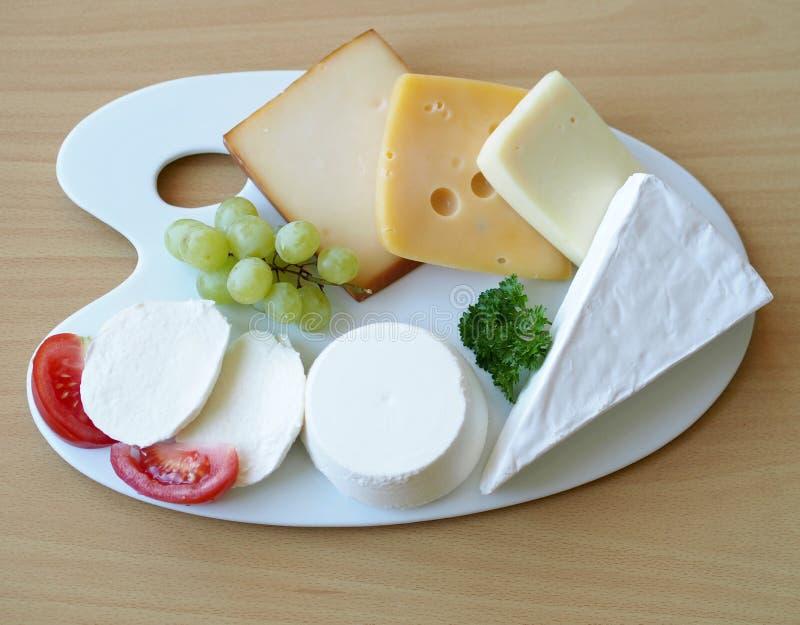 Gran variedad de quesos en la placa de la porcelana foto de archivo libre de regalías