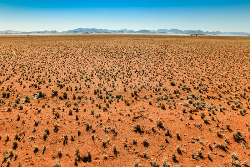 Gran visión sobre el llano y la cordillera herbosos del desierto foto de archivo libre de regalías