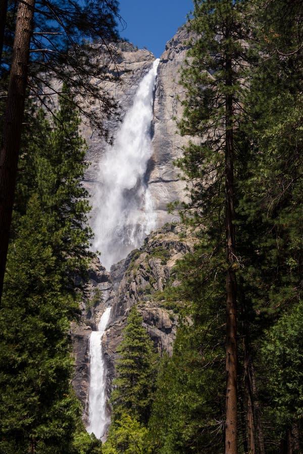Gran Yosemite Falls fotos de archivo libres de regalías