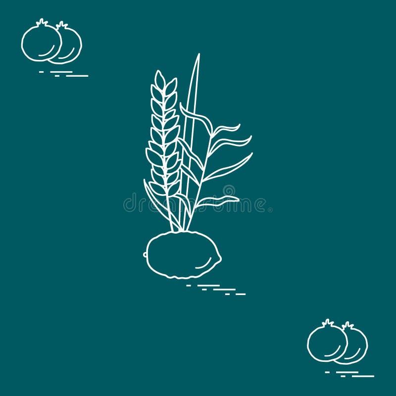 Granaatappel en Lulav - symbolische attributen van de vakantie van Sukkot Joodse tradities en symbolen royalty-vrije illustratie