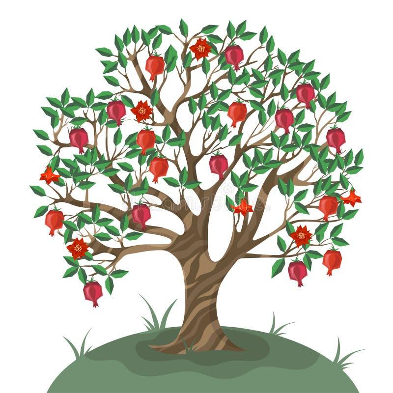 Granaatappelboom op witte achtergrond wordt ge?soleerd die Vector illustratie stock illustratie
