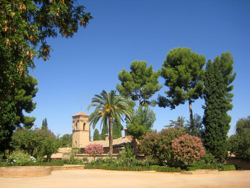 Download Granada stock photo. Image of tree, solar, flora, prickly - 23954498