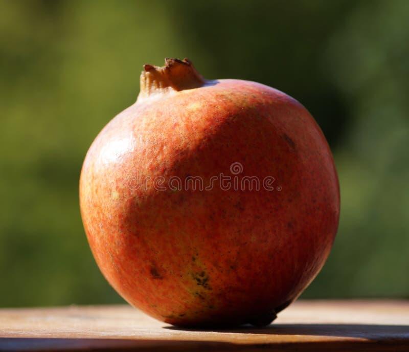 Download Granada foto de archivo. Imagen de antioxidantes, rojo - 42434722