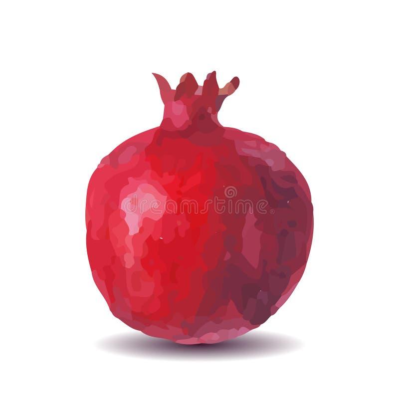Granada de la acuarela de la fruta fresca en un fondo blanco stock de ilustración