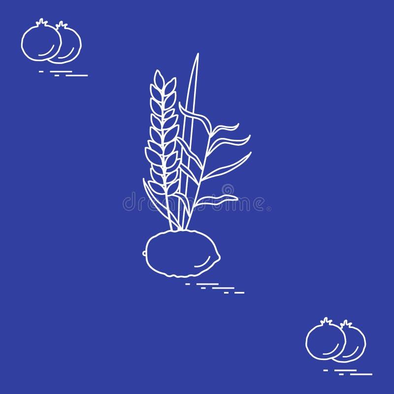 Granada y Lulav - cualidad simbólica del día de fiesta de Suk ilustración del vector