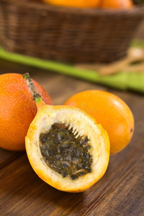 Granadiglia dolce o Grenadia fotografia stock