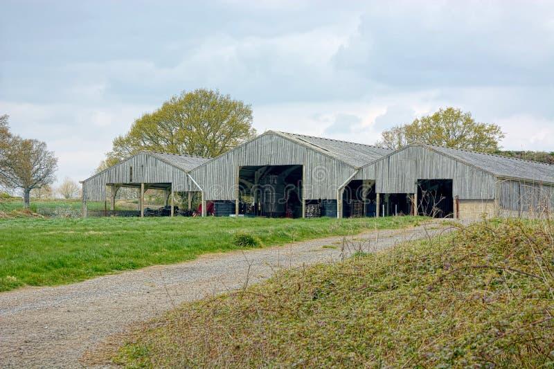 Granai di legno su un'azienda agricola immagine stock