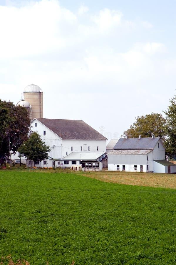 Granai e sili sull'azienda agricola fotografie stock
