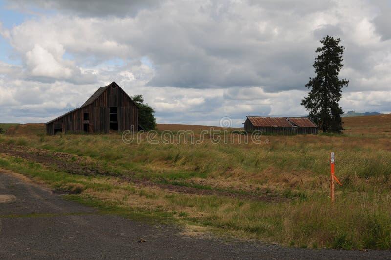 Granai e vita dell'America del righello nell'Idaho fotografia stock libera da diritti