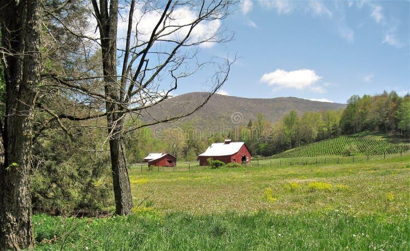 Granai lungo Virginia Creeper Trail immagine stock libera da diritti