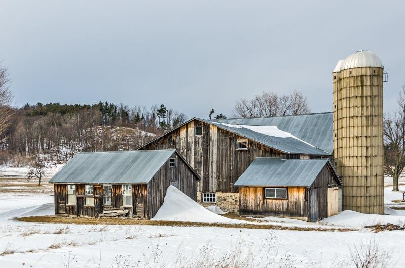 Granai soleggiati e silos nell'inverno fotografia stock