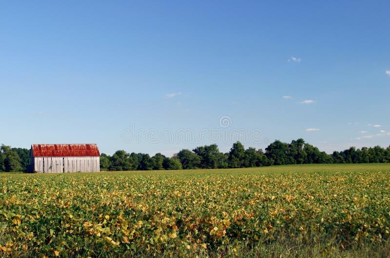 Granaio del Maryland fotografie stock libere da diritti
