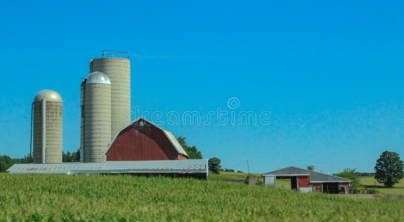 Granaio 1 del Michigan fotografia stock
