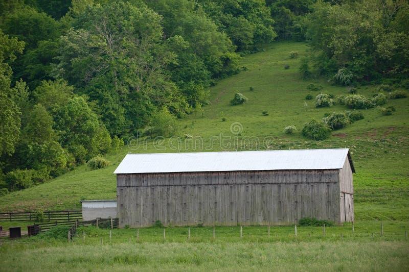 Granaio del tabacco del Kentucky immagini stock libere da diritti