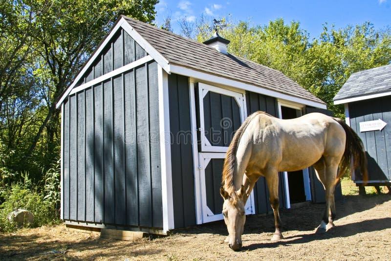 Granaio di cavallo fotografia stock