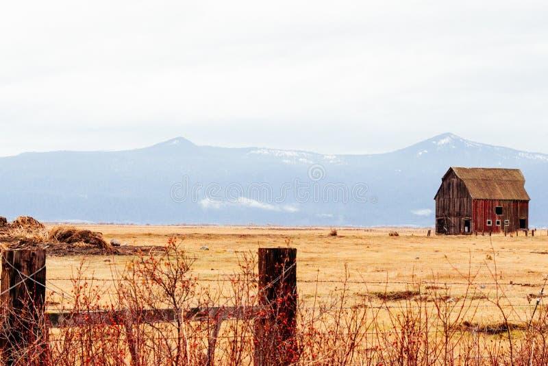 Granaio di legno rosso in un campo asciugato con le montagne di stupore nei precedenti fotografia stock libera da diritti