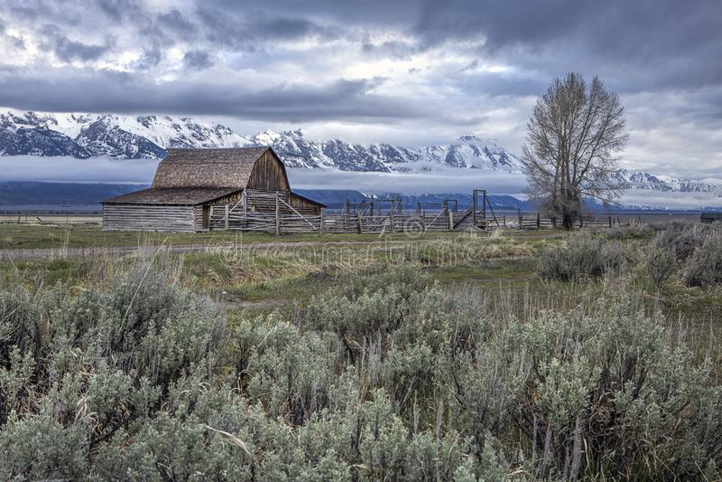 Granaio di Moulton ed il grande Tetons fotografia stock libera da diritti