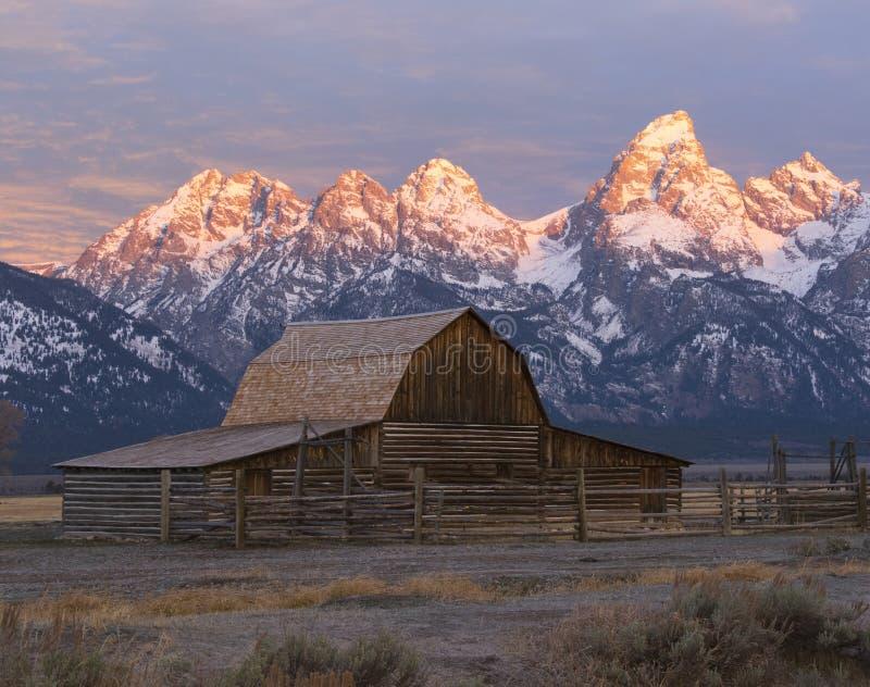 Granaio di Moulton sulla fila mormonica in grande Teton ad alba fotografie stock libere da diritti