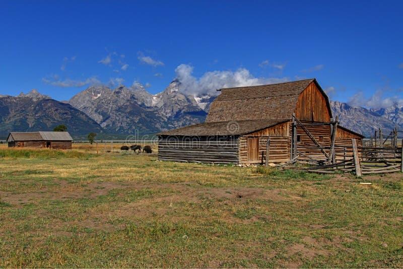 Granaio mormonico di riga nel grande Tetons fotografia stock libera da diritti