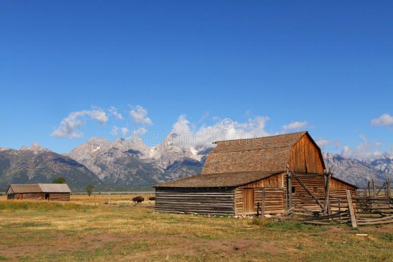 Granaio mormonico di riga nel grande Tetons fotografia stock