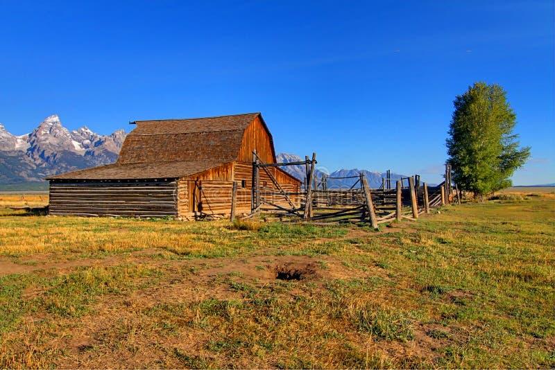 Granaio mormonico di riga nel grande Tetons immagine stock