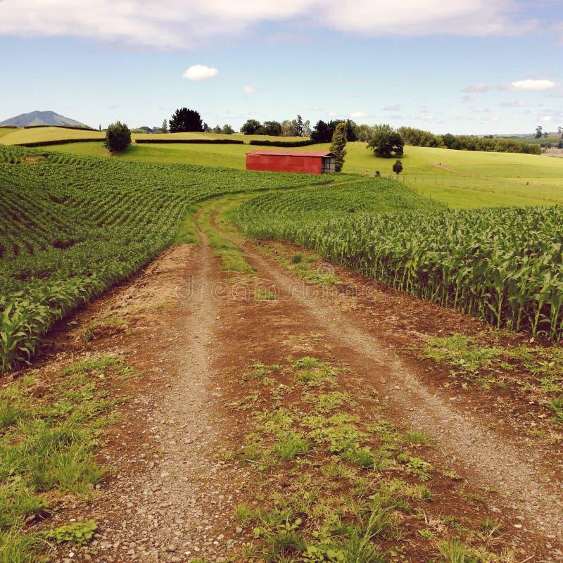 Granaio rosso immagine stock