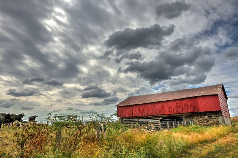 Granaio rosso in campagna durante l'autunno immagini stock