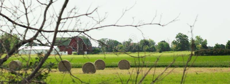 Granaio rosso con lo stretto verde del tetto immagine stock