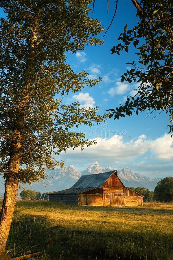 Granaio storico nella grande sosta nazionale di Teton fotografia stock