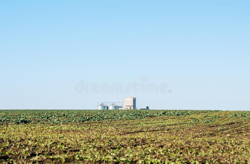 Granary on the background of a harvest field stock photo