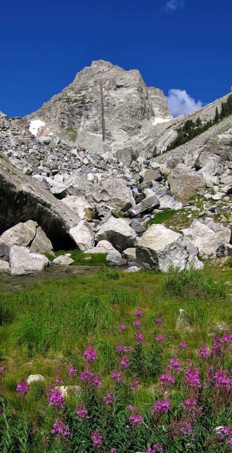 Granat-Schlucht und das mittlere Teton stockbilder