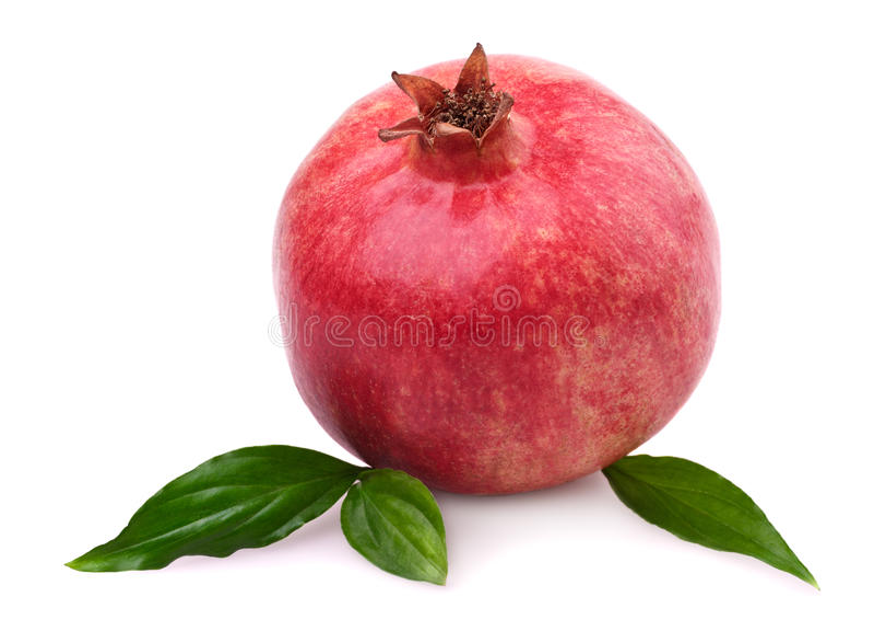 Granatapfel mit Blättern stockfoto