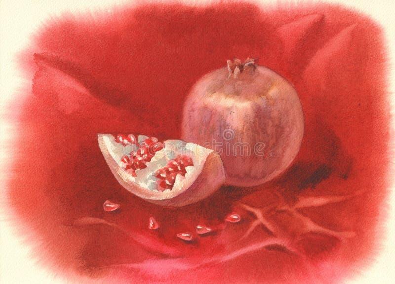 Granatapfelfruchtaquarell lizenzfreie abbildung