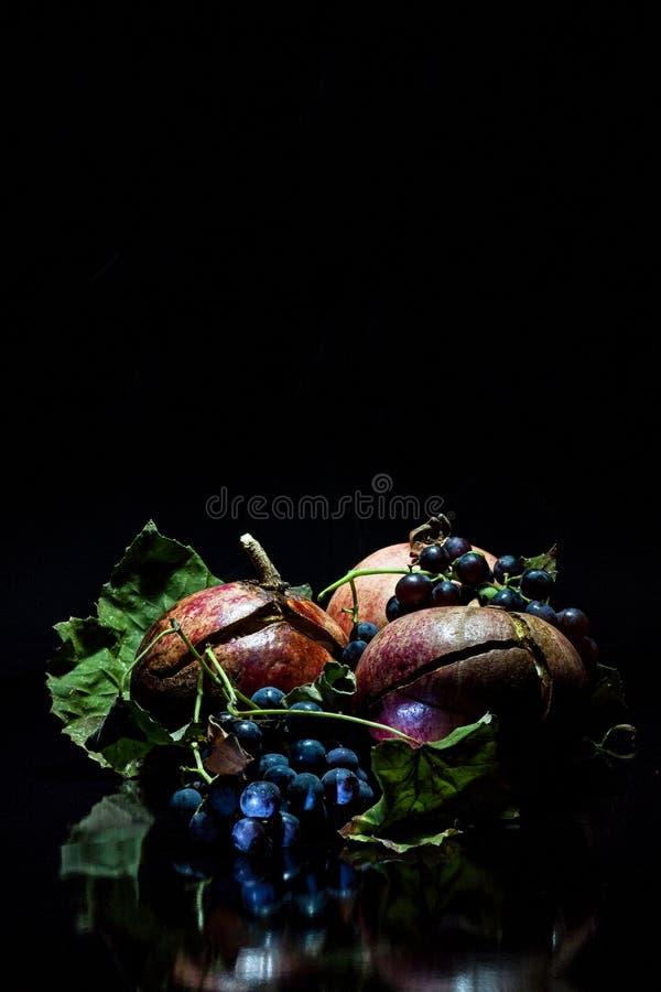 Granatowiec i dzicy winogrona na czarnym tle royalty ilustracja