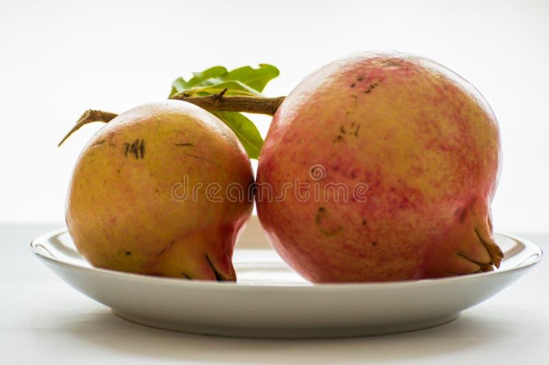 Granatowiec, owoc, jedzenie obrazy royalty free
