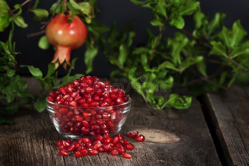 Granatowiec Sia Wiszącą Całą owoc zdjęcie stock