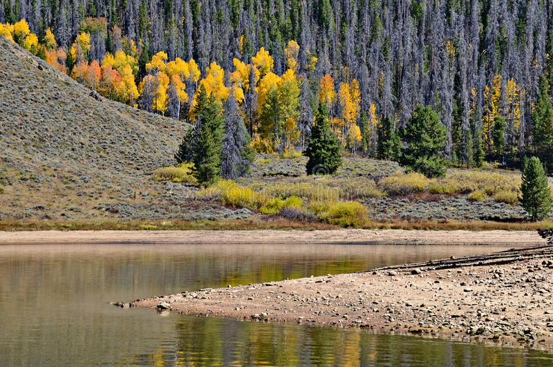 Granbymeer in de Herfst, Colorado royalty-vrije stock fotografie