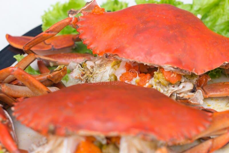 Granchi del granchio bollito ed uova freschi e cotti a vapore del granchio con la salsa piccante dei frutti di mare immagini stock