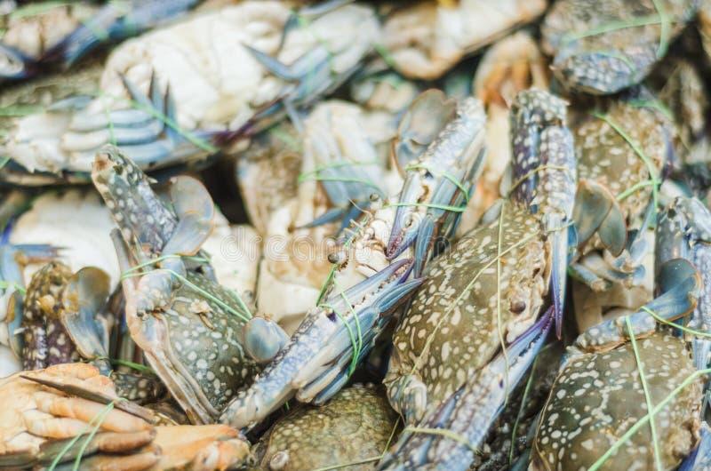 Granchi ed aragosta al mercato ittico fotografia stock