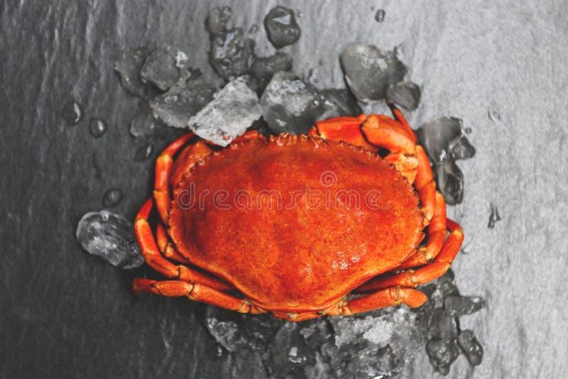 Granchi su ghiaccio con fondo scuro - chiuda su del granchio di pietra cotto a vapore nel ristorante dei frutti di mare fotografia stock libera da diritti