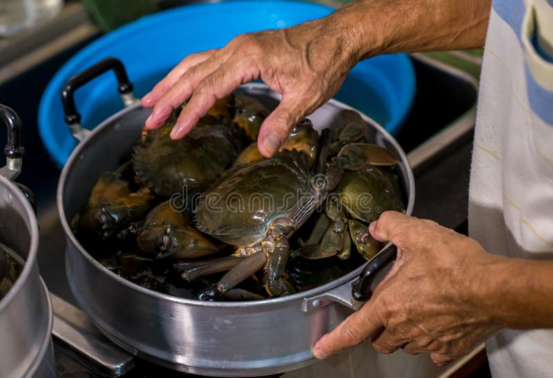 Granchio cotto a vapore in vaso granchi in tensione in un vaso Cottura a vapore dei granchi pelosi di Schang-Hai, cucina cinese fotografia stock