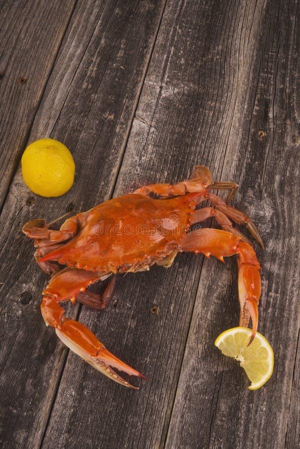 Granchio cucinato con il limone immagini stock libere da diritti