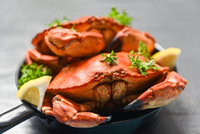 Granchio cucinato sullo stufato di castrato e sul fondo scuro - i frutti di mare hanno bollito i granchi di pietra rossi immagini stock libere da diritti