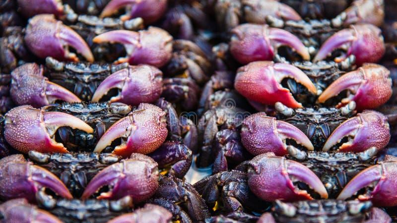 Granchio salato al mercato tailandese dell'alimento della via fotografia stock