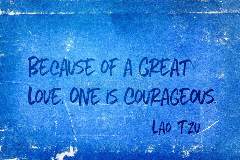Grand amour Tzu photos libres de droits